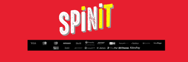 payment info spinit uk